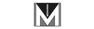 Logo de Menarini